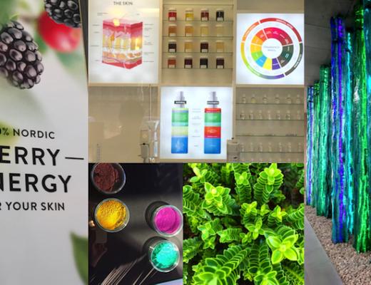 Geballte Pflanzen-Power steckt in den Produkten von Mádara und wird wissenschaftlich erforscht. Allein Birkenwasser enthält 55 Beauty-Aktivstoffe.